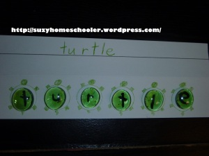 15 Things To Do with Your Teenage Mutant Ninja Turtle Fan from Suzy Homeschooler (3)