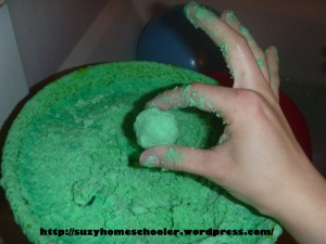 15 Things To Do with Your Teenage Mutant Ninja Turtle Fan from Suzy Homeschooler (8)