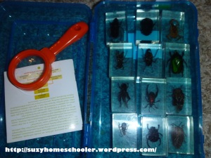 25 Box Lessons for Preschoolers from Suzy Homeschooler (14)