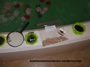 Garden Themed Bath from Suzy Homeschooler (2)