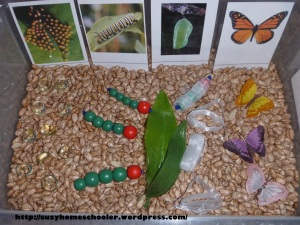10 Butterfly Themed Sensory Bins from Suzy Homeschooler (5)