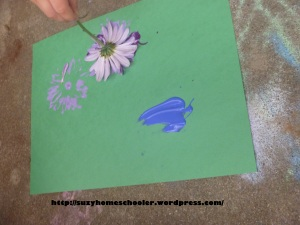 Activities Using Real Flowers for Flower Theme Week from Suzy Homeschooler (5)