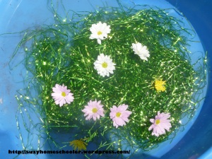 Activities Using Real Flowers for Flower Theme Week from Suzy Homeschooler (7)