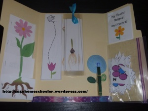 Flower Lapbook from Suzy Homeschooler (1)