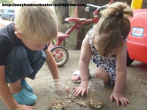 Montessori Inspired Flower Theme Week Activities from Suzy Homeschooler (1)