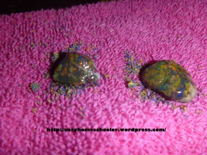 Travel-Sized Pet Rock and Pet Rock Home from Suzy Homeschooler (5)