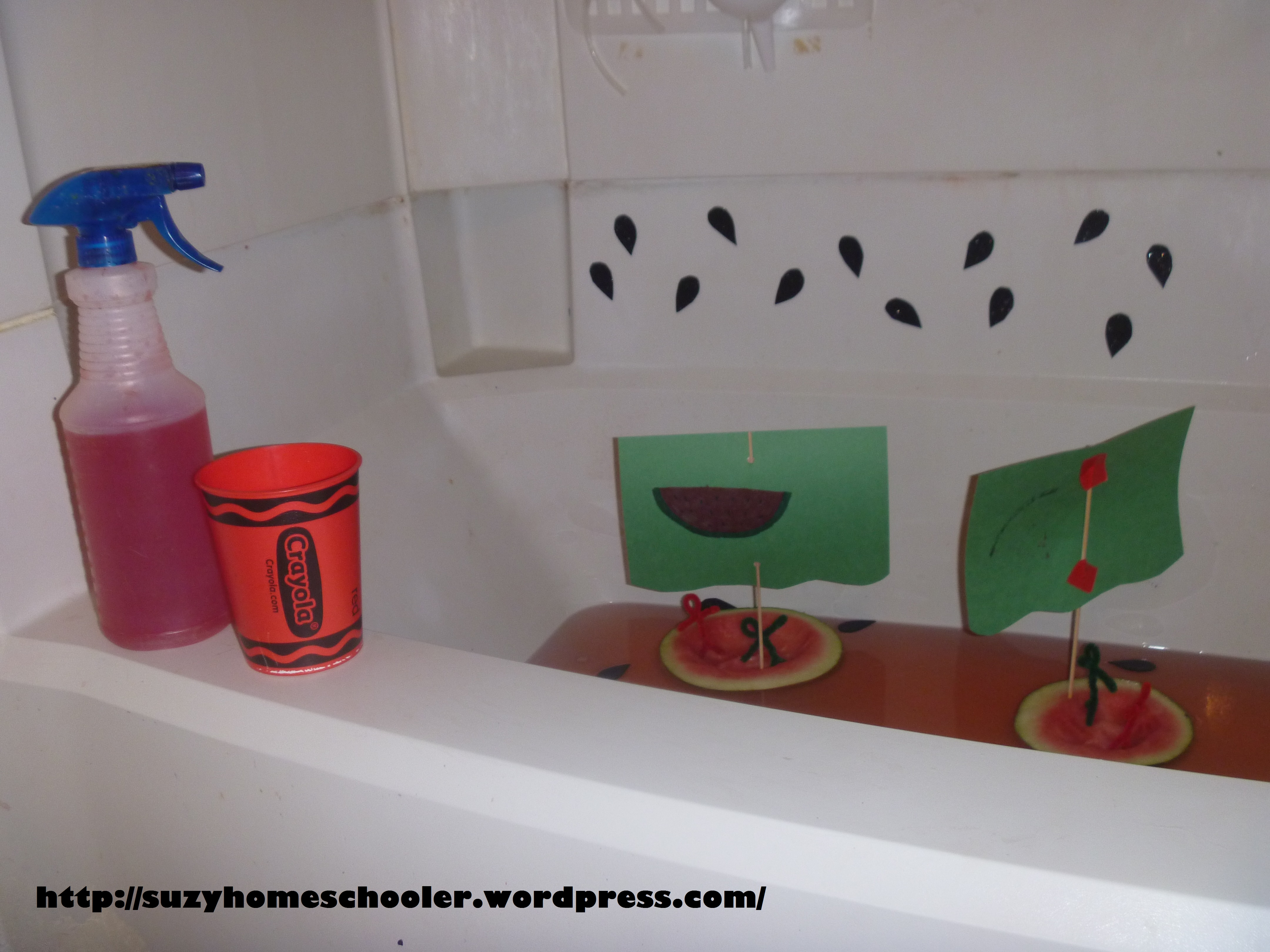 Watermelon Theme Bath Suzy Homeschooler