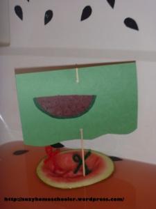 Watermelon Theme Bath from Suzy Homeschooler (2)