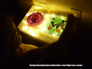 Light Table from Suzy Homeschooler (1)