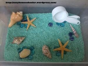 Ocean Theme Unit from Suzy Homeschooler (8)