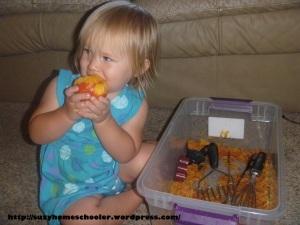 Peach Sensory Bin from Suzy Homeschooler (4)