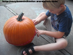 15 Ways to Play and Learn with a Pumpkin from Suzy Homeschooler (1)
