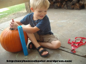 15 Ways to Play and Learn with a Pumpkin from Suzy Homeschooler (4)