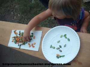 15 Ways to Play and Learn with a Pumpkin from Suzy Homeschooler (49)