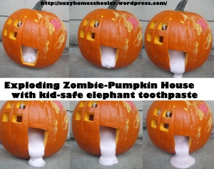 15 Ways to Play and Learn with a Pumpkin from Suzy Homeschooler (53)