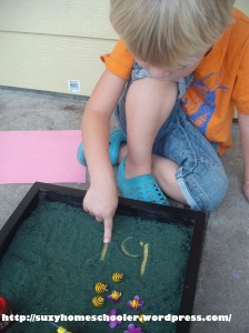 Bee Themed Salt Tray in Action from Suzy Homeschooler (2)