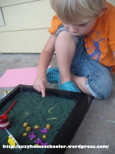 Bee Themed Salt Tray in Action from Suzy Homeschooler (7)