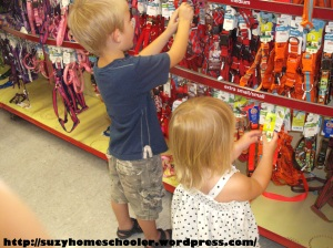 Dog Theme Week from Suzy Homeschooler, field trip to PetSmart (1)