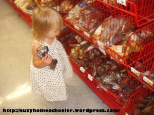 Dog Theme Week from Suzy Homeschooler, field trip to PetSmart (3)