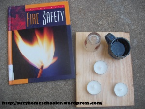 Fire Experiment from Suzy Homeschooler (1)