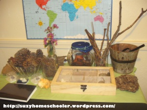 Montessori Inspired Nature Table from Suzy Homeschooler (1)