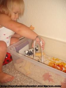 Farm Animal Sesnory Bin from Suzy Homeschooler (4)