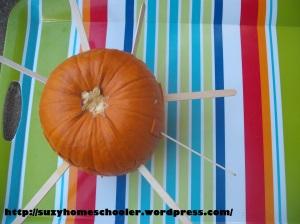 Pumpkin Puzzle (1)