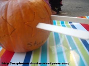 Pumpkin Puzzle (2)