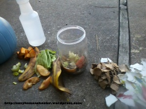 Harvest Theme Week (pt2) from Suzy Homeschooler - Compost Bin (4)
