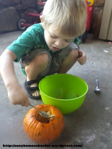 Harvest Theme Week (pt2) from Suzy Homeschooler - Dissecting a Pumpkin (1)