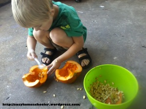 Harvest Theme Week (pt2) from Suzy Homeschooler - Dissecting a Pumpkin (3)
