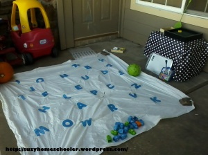 Literacy Free Play, Suzy Homeschooler (1)